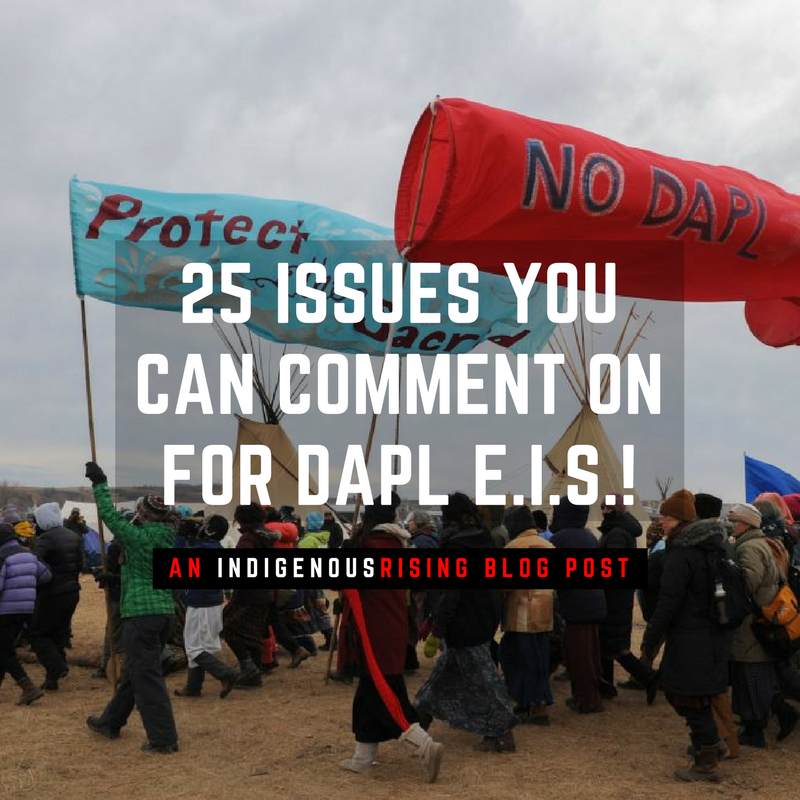 BLOG: 25 Issues You Can Comment On for the DAPL EIS!